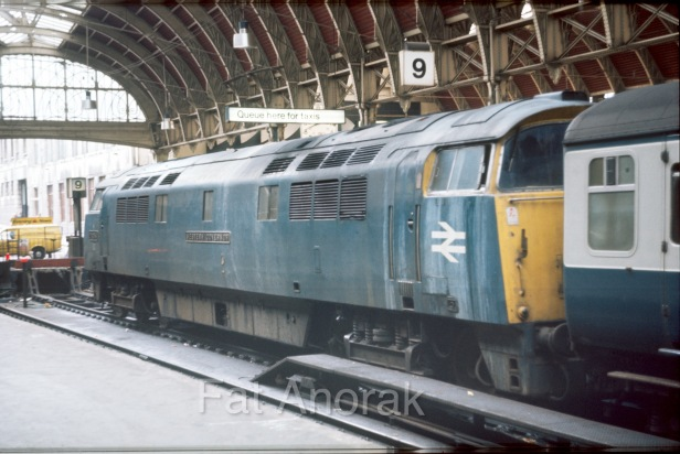 d1054 paddington 1970s copy-1.jpg